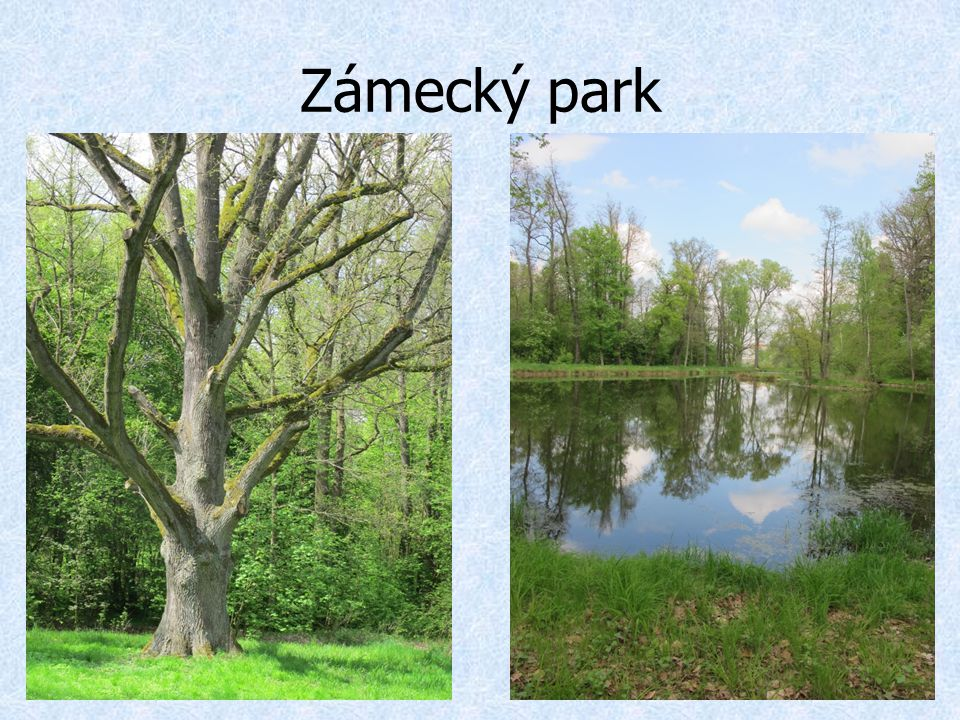 Zámecký park