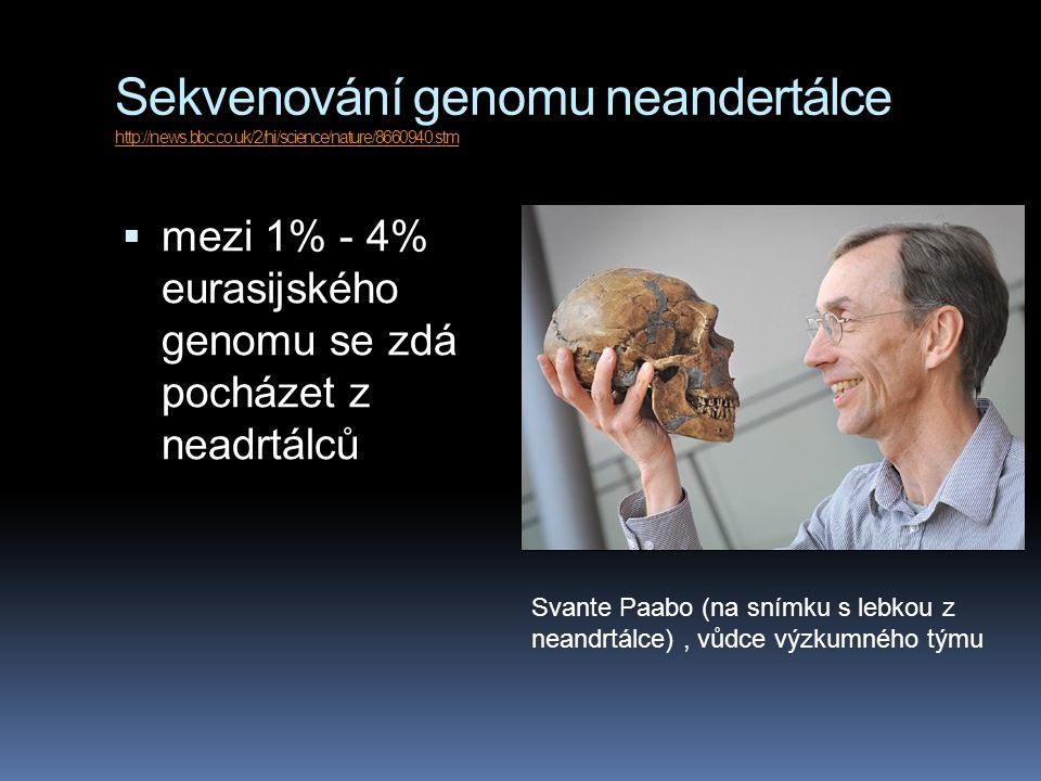 Sekvenování genomu neandertálce http://news.bbc.co.uk/2/hi/science/nature/8660940.stm http://news.bbc.co.uk/2/hi/science/nature/8660940.stm  mezi 1% - 4% eurasijského genomu se zdá pocházet z neadrtálců Svante Paabo (na snímku s lebkou z neandrtálce), vůdce výzkumného týmu
