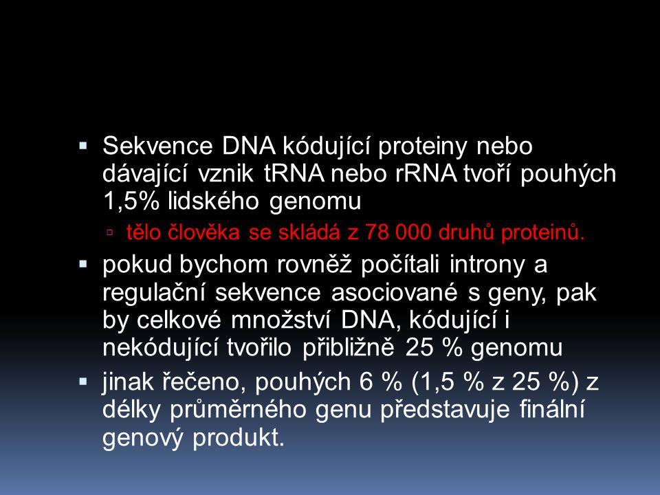  Sekvence DNA kódující proteiny nebo dávající vznik tRNA nebo rRNA tvoří pouhých 1,5% lidského genomu  tělo člověka se skládá z 78 000 druhů proteinů.