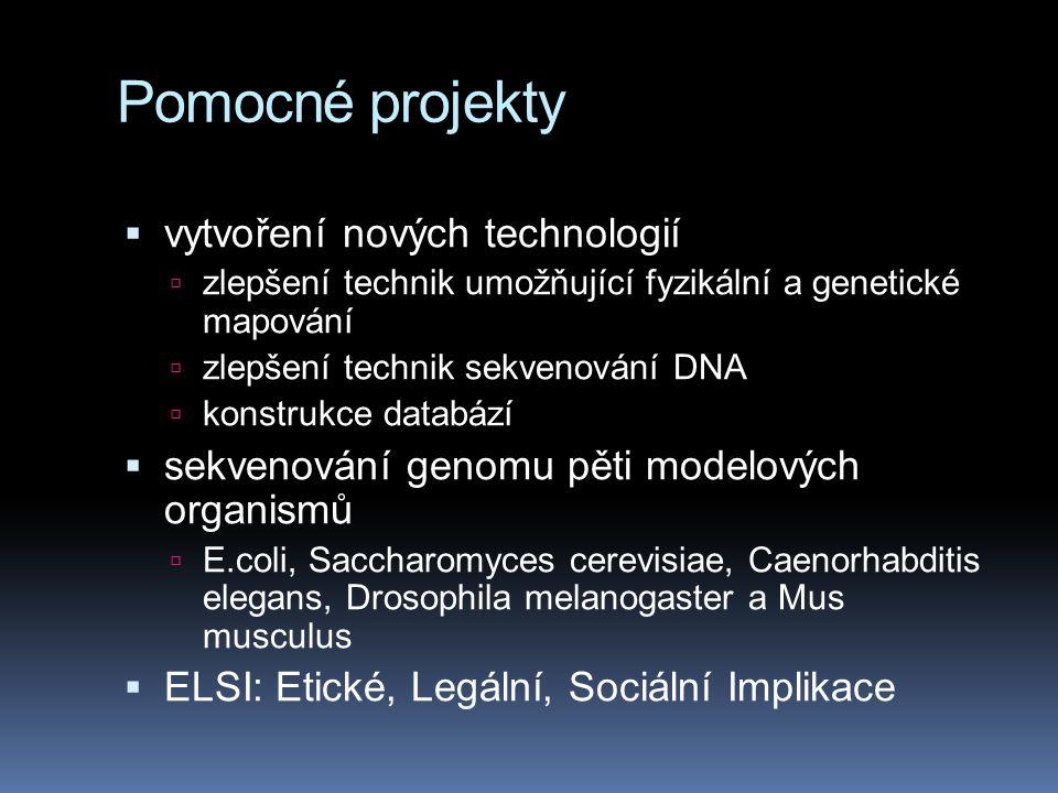 Pomocné projekty  vytvoření nových technologií  zlepšení technik umožňující fyzikální a genetické mapování  zlepšení technik sekvenování DNA  konstrukce databází  sekvenování genomu pěti modelových organismů  E.coli, Saccharomyces cerevisiae, Caenorhabditis elegans, Drosophila melanogaster a Mus musculus  ELSI: Etické, Legální, Sociální Implikace
