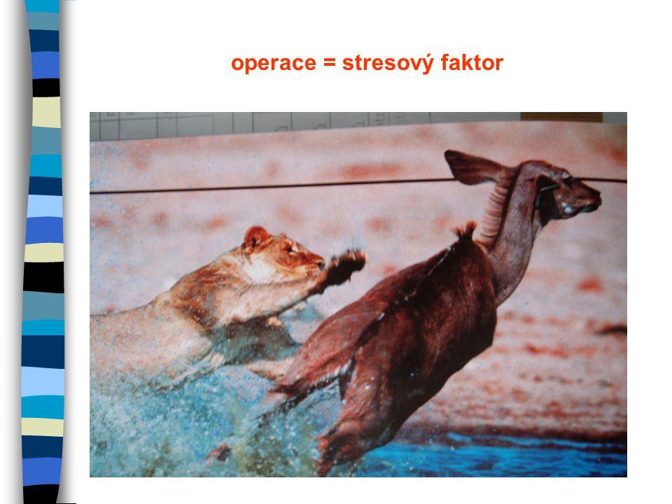 operace = stresový faktor