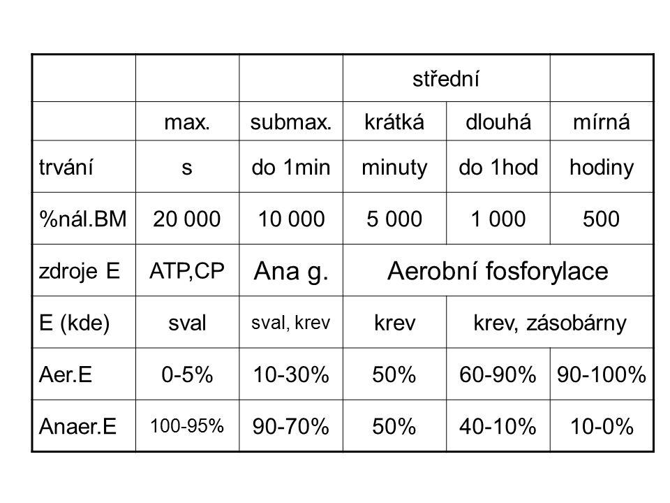 střední max.submax.krátkádlouhámírná trvánísdo 1minminutydo 1hodhodiny %nál.BM20 00010 0005 0001 000500 zdroje EATP,CP Ana g.Aerobní fosforylace E (kde)sval sval, krev krevkrev, zásobárny Aer.E0-5%10-30%50%60-90%90-100% Anaer.E 100-95% 90-70%50%40-10%10-0%