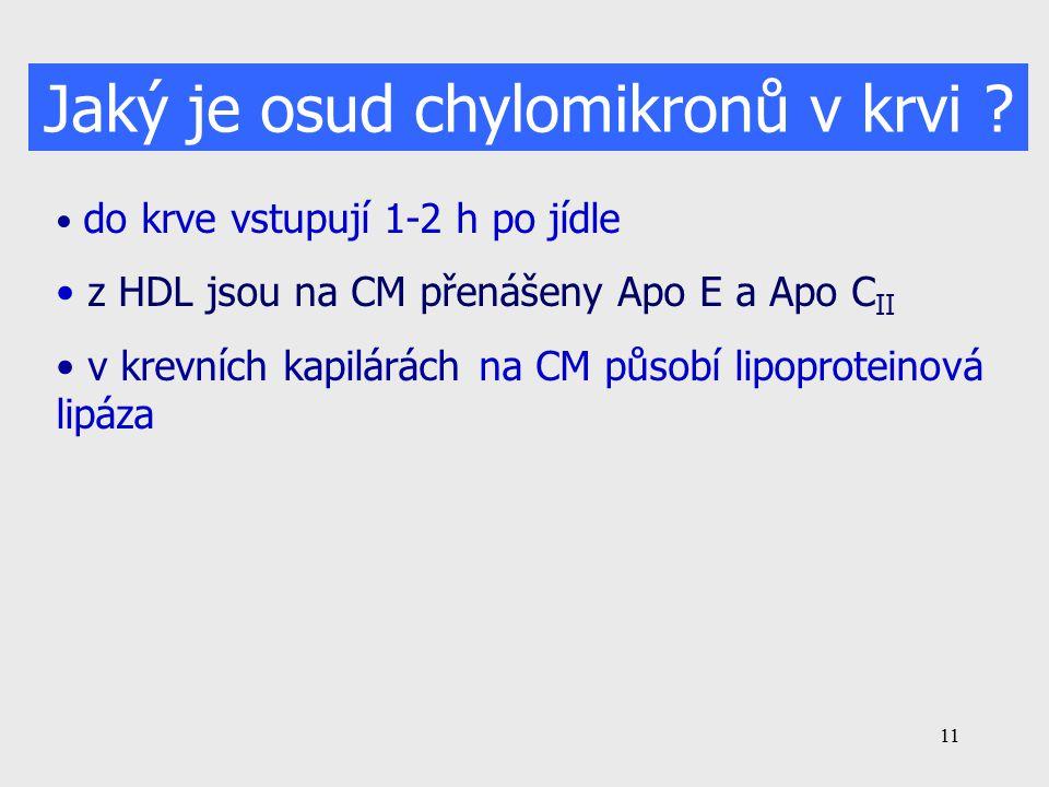 11 Jaký je osud chylomikronů v krvi .