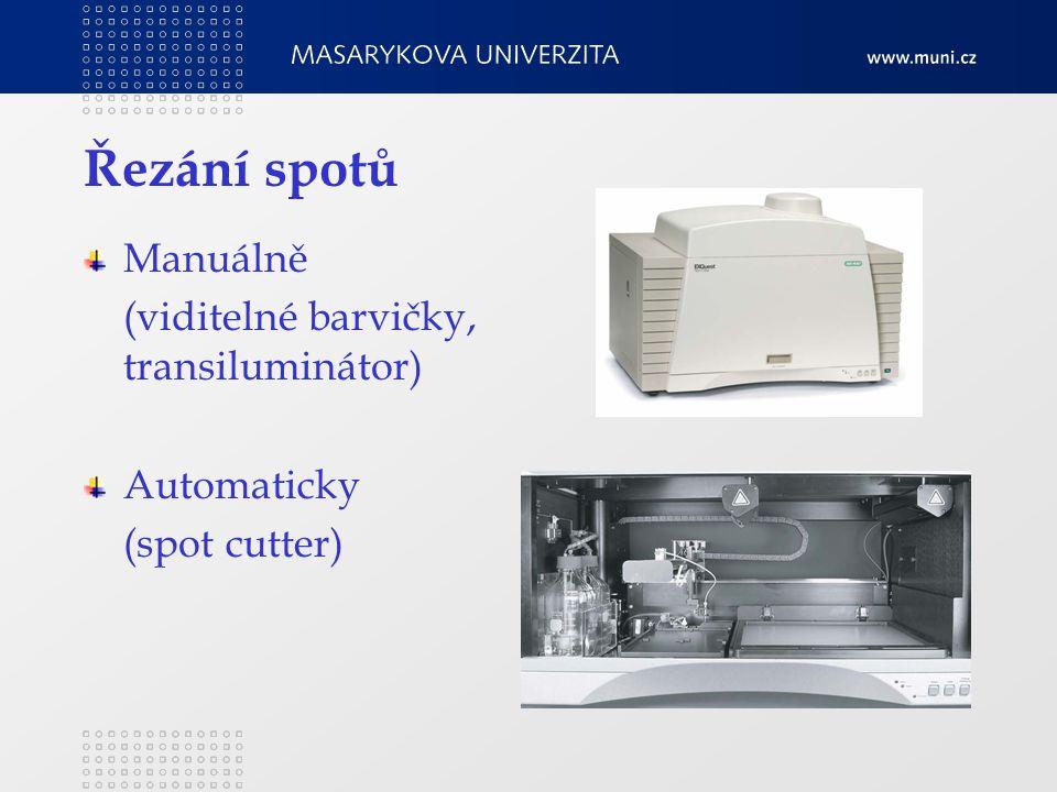 Řezání spotů Manuálně (viditelné barvičky, transiluminátor) Automaticky (spot cutter)