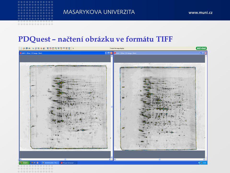 PDQuest – načtení obrázku ve formátu TIFF