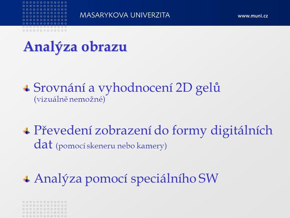 Analýza obrazu Srovnání a vyhodnocení 2D gelů (vizuálně nemožné) Převedení zobrazení do formy digitálních dat (pomocí skeneru nebo kamery) Analýza pomocí speciálního SW