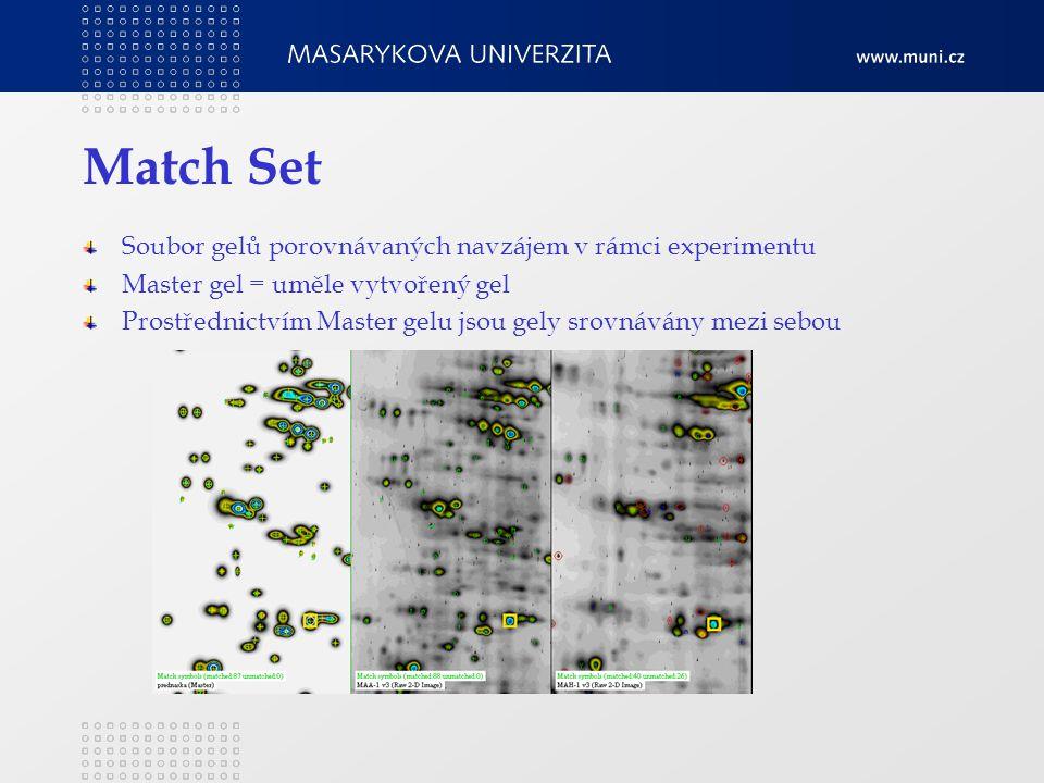 Match Set Soubor gelů porovnávaných navzájem v rámci experimentu Master gel = uměle vytvořený gel Prostřednictvím Master gelu jsou gely srovnávány mezi sebou