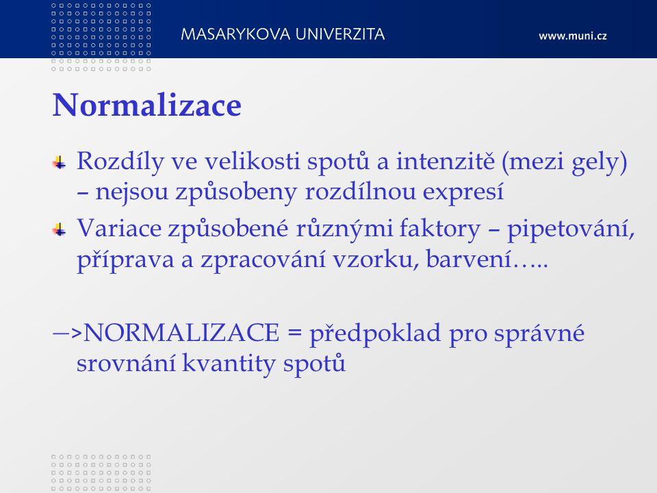 Normalizace Rozdíly ve velikosti spotů a intenzitě (mezi gely) – nejsou způsobeny rozdílnou expresí Variace způsobené různými faktory – pipetování, příprava a zpracování vzorku, barvení…..