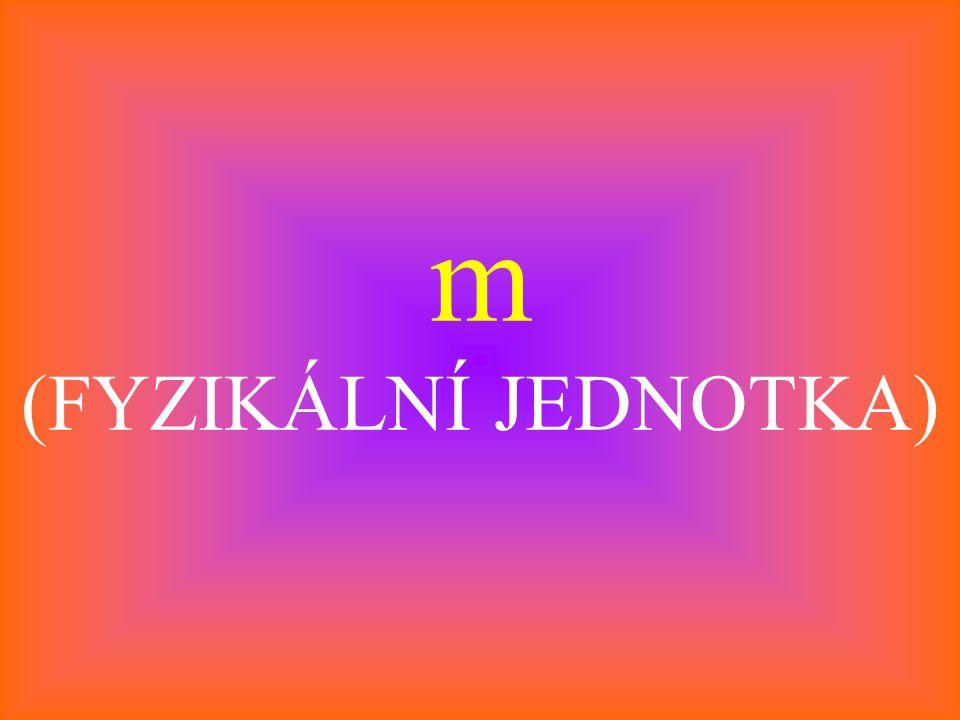 m (FYZIKÁLNÍ JEDNOTKA)