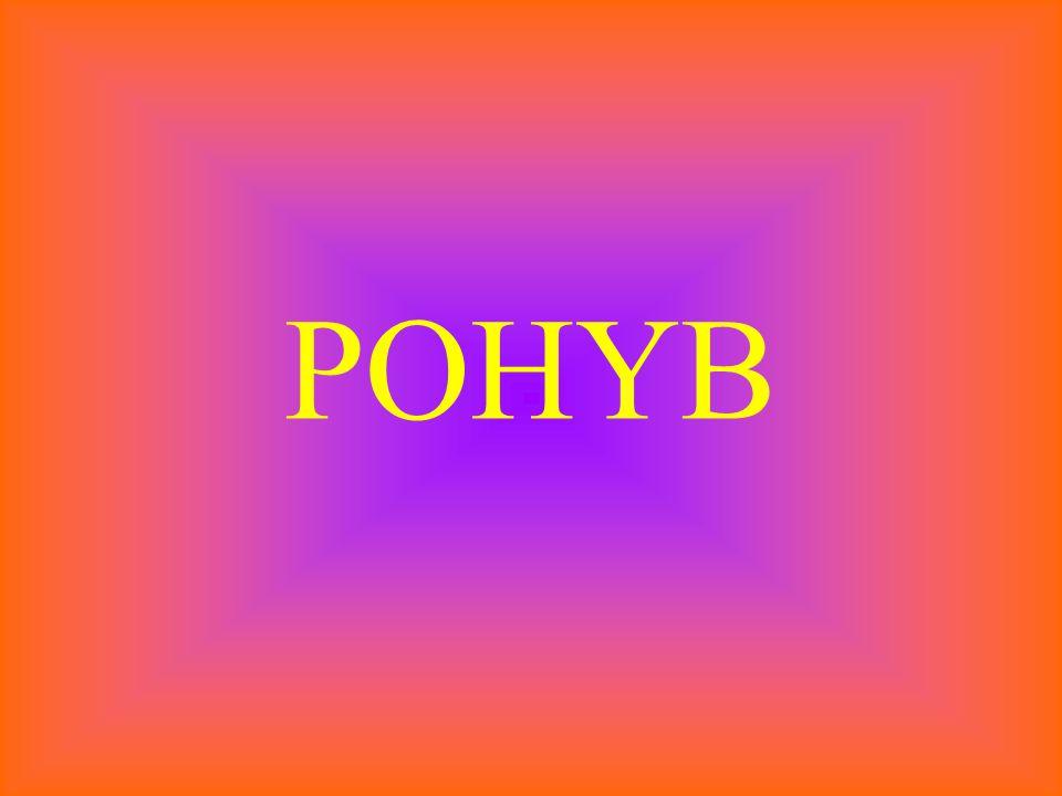 POHYB
