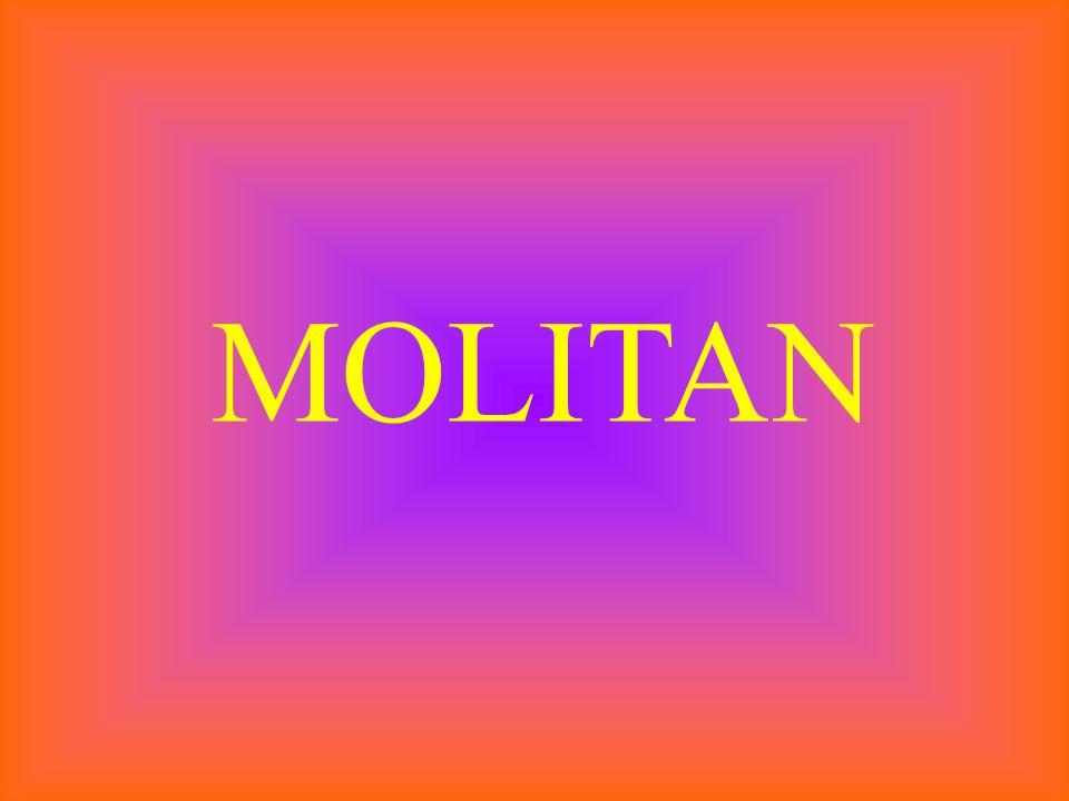 MOLITAN