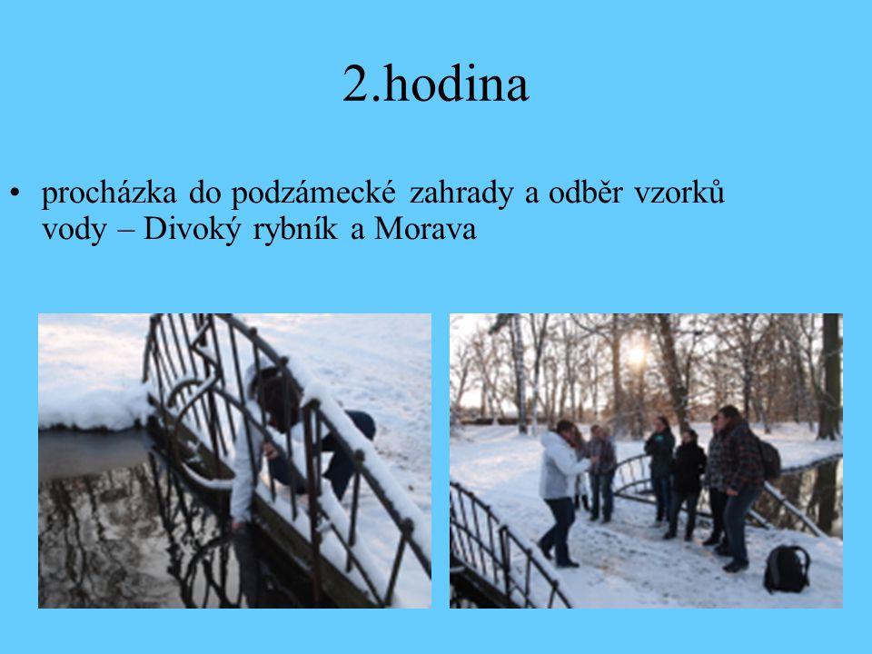 2.hodina procházka do podzámecké zahrady a odběr vzorků vody – Divoký rybník a Morava