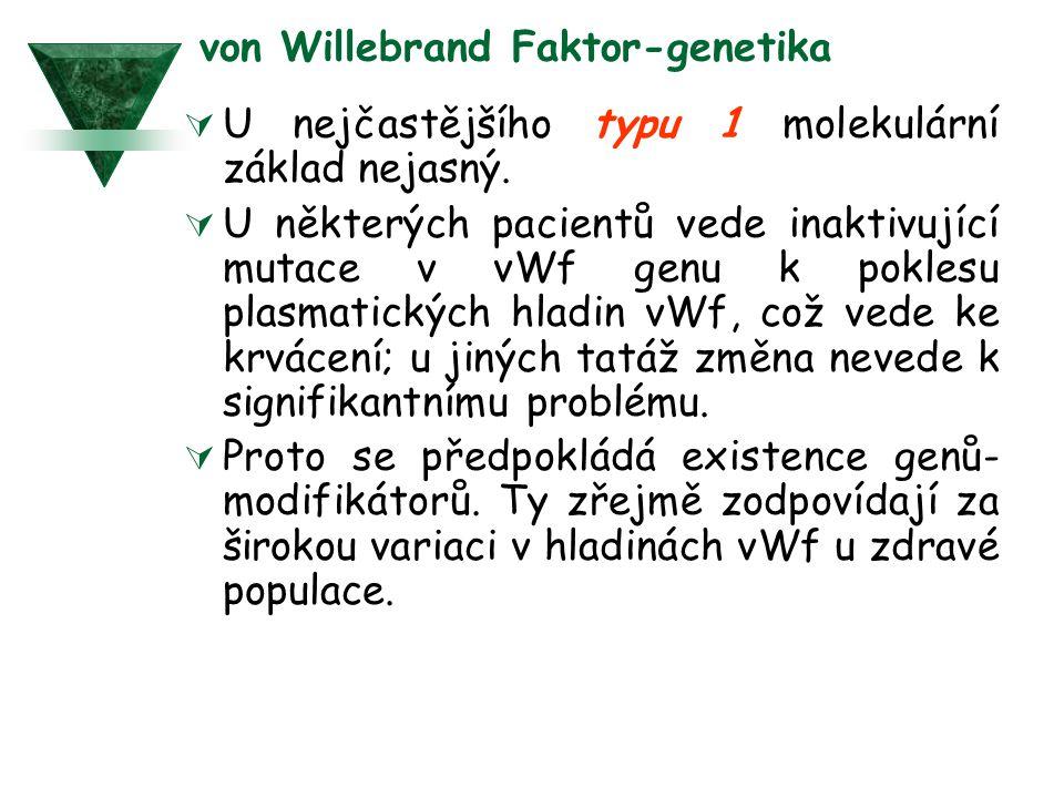 von Willebrand Faktor-genetika  U nejčastějšího typu 1 molekulární základ nejasný.  U některých pacientů vede inaktivující mutace v vWf genu k pokle