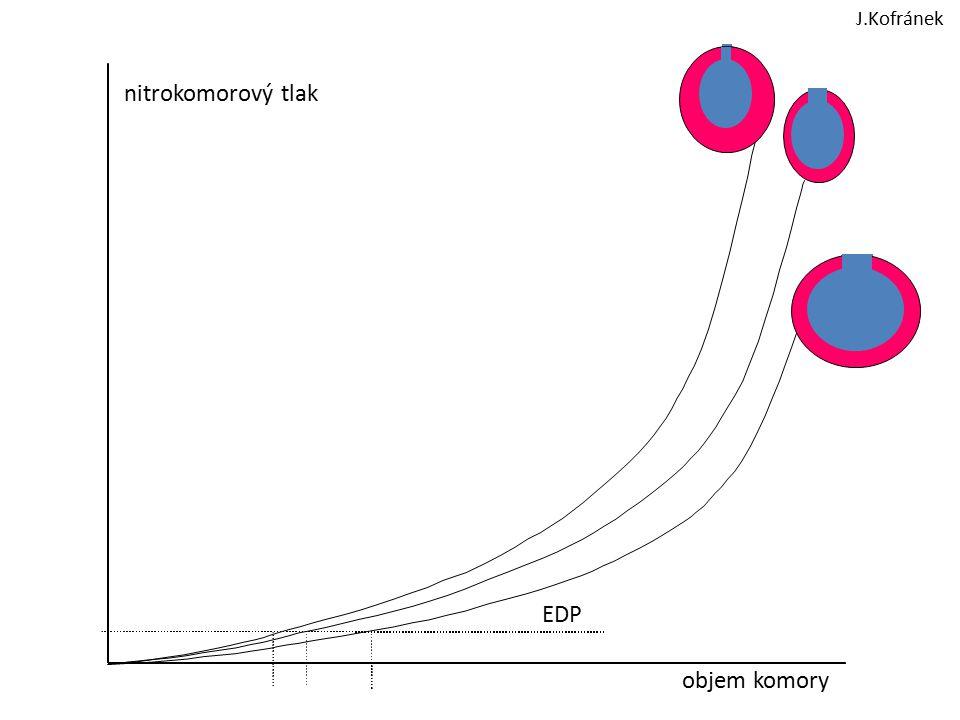 Patogeneze aterosklerózy -poškození endotelu shear stress, vysoký TK, turbulentní proudění infekční a imunitní mechanismy toxické vlivy vč.