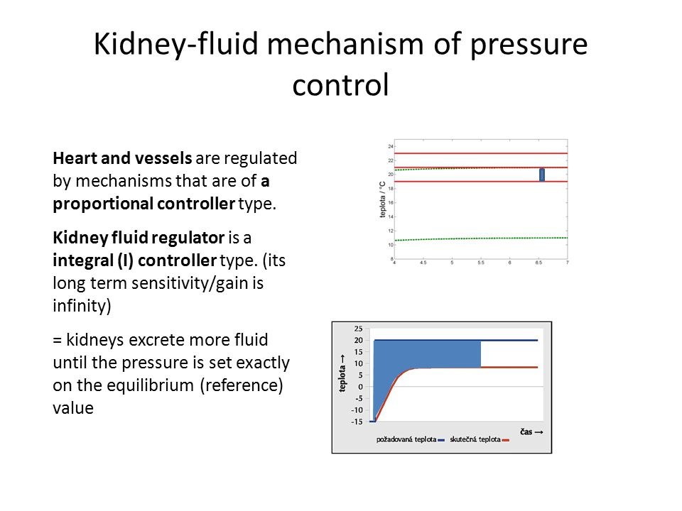 Kidney-fluid mechanism of pressure control Heart and vessels are regulated by mechanisms that are of a proportional controller type. Kidney fluid regu