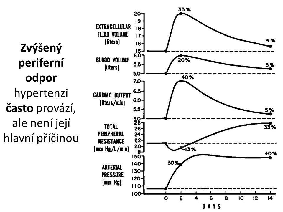 Zvýšený periferní odpor hypertenzi často provází, ale není její hlavní příčinou