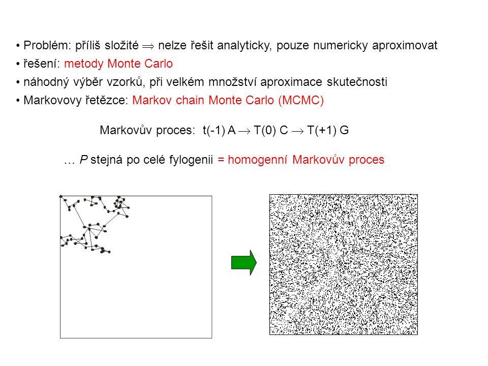 Markovův proces: t(-1) A  T(0) C  T(+1) G … P stejná po celé fylogenii = homogenní Markovův proces Problém: příliš složité  nelze řešit analyticky, pouze numericky aproximovat řešení: metody Monte Carlo náhodný výběr vzorků, při velkém množství aproximace skutečnosti Markovovy řetězce: Markov chain Monte Carlo (MCMC)