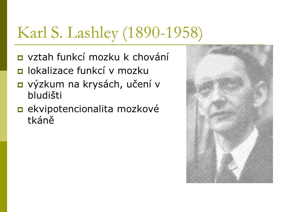 Karl S. Lashley (1890-1958)  vztah funkcí mozku k chování  lokalizace funkcí v mozku  výzkum na krysách, učení v bludišti  ekvipotencionalita mozk
