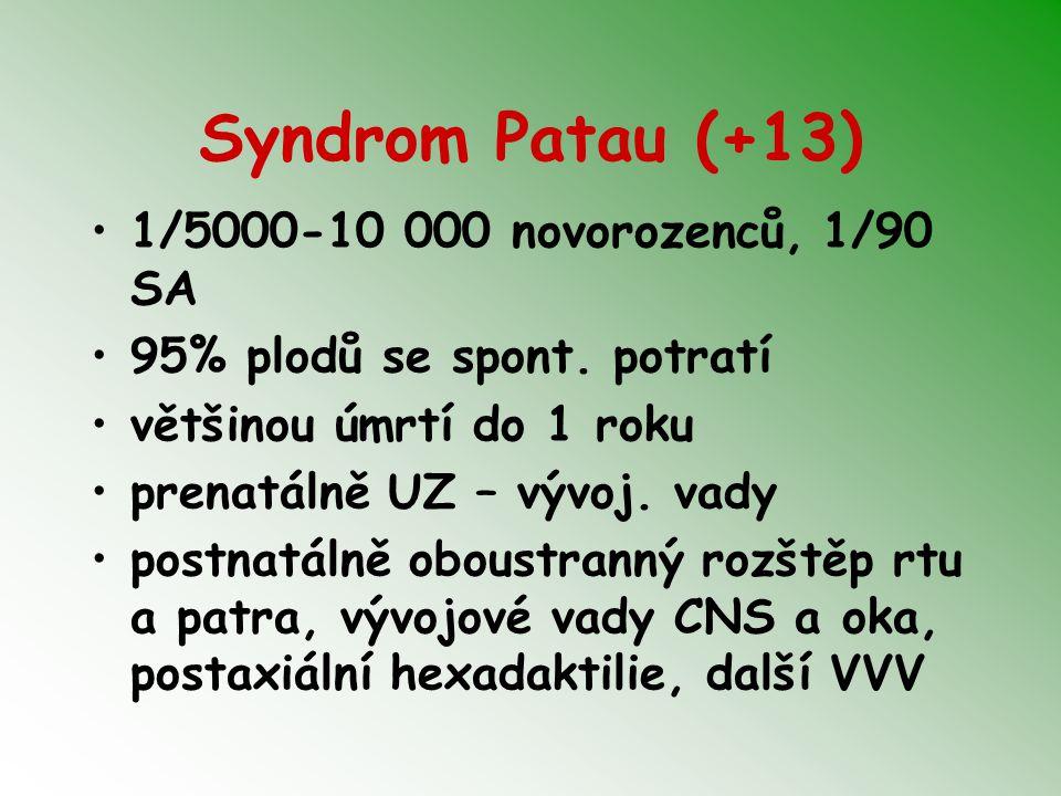 Syndrom Patau (+13) 1/5000-10 000 novorozenců, 1/90 SA 95% plodů se spont. potratí většinou úmrtí do 1 roku prenatálně UZ – vývoj. vady postnatálně ob