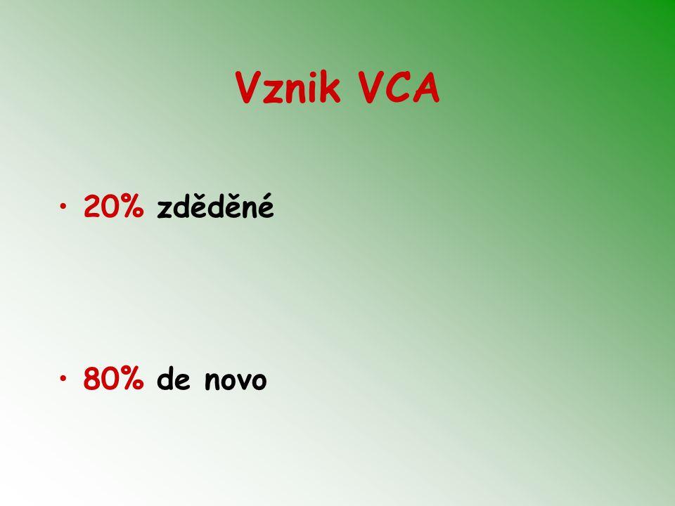 Invazivní postupy CVS – odběr choriových klků – po 10.t.g.