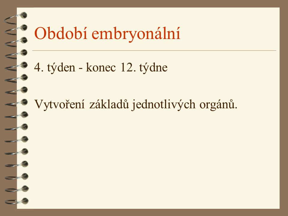 Období embryonální 4. týden - konec 12. týdne Vytvoření základů jednotlivých orgánů.