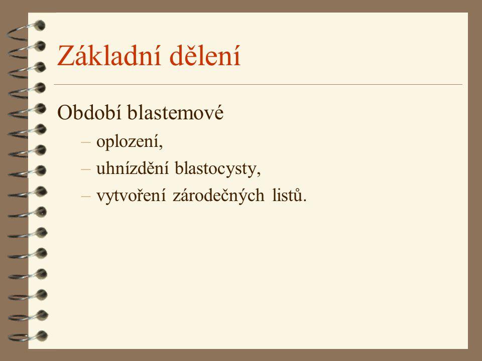 Základní dělení Období blastemové –oplození, –uhnízdění blastocysty, –vytvoření zárodečných listů.
