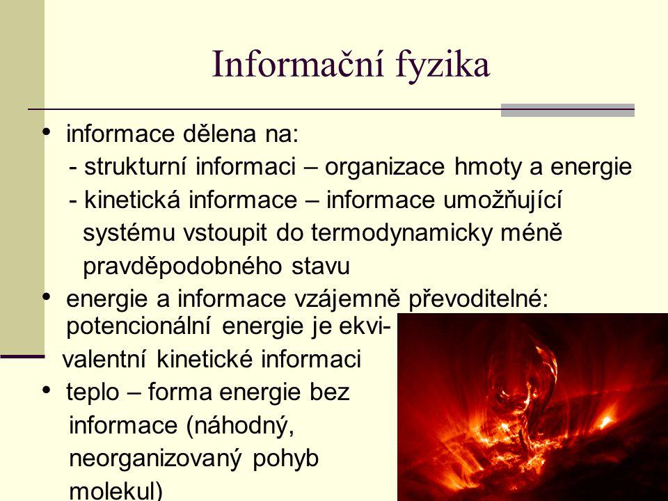 Informační fyzika informace dělena na: - strukturní informaci – organizace hmoty a energie - kinetická informace – informace umožňující systému vstoupit do termodynamicky méně pravděpodobného stavu energie a informace vzájemně převoditelné: potencionální energie je ekvi- valentní kinetické informaci teplo – forma energie bez informace (náhodný, neorganizovaný pohyb molekul)