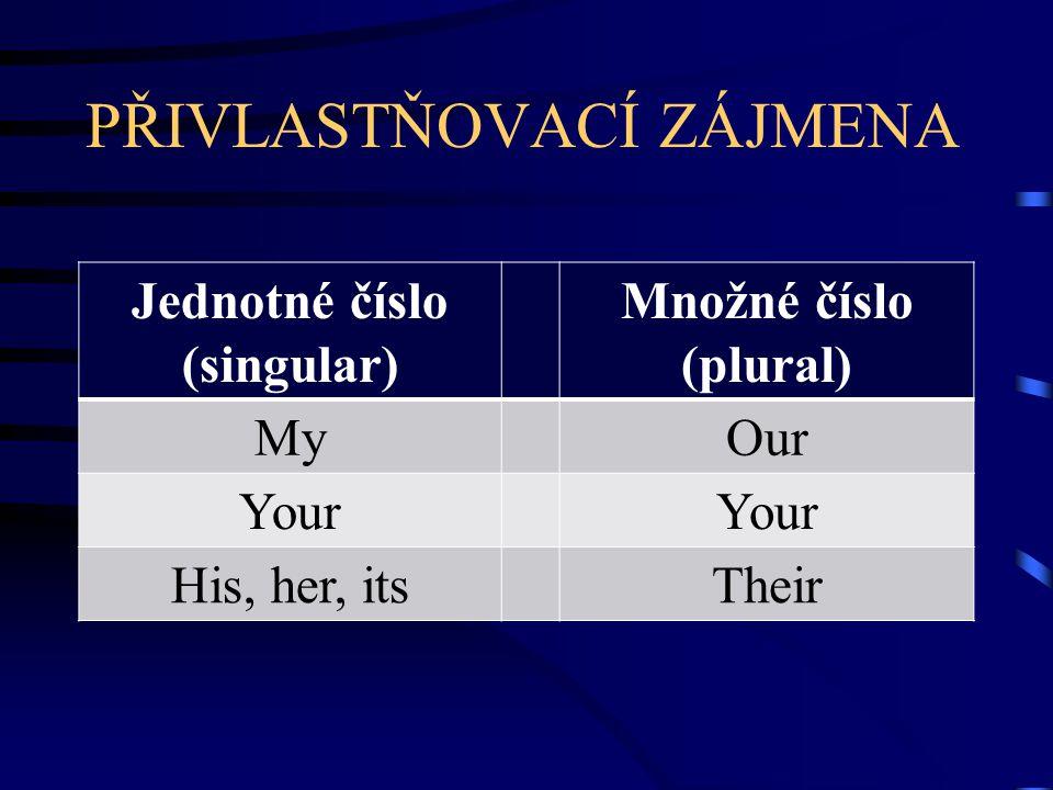 PŘIVLASTŇOVACÍ ZÁJMENA Jednotné číslo (singular) Množné číslo (plural) MyOur Your His, her, itsTheir