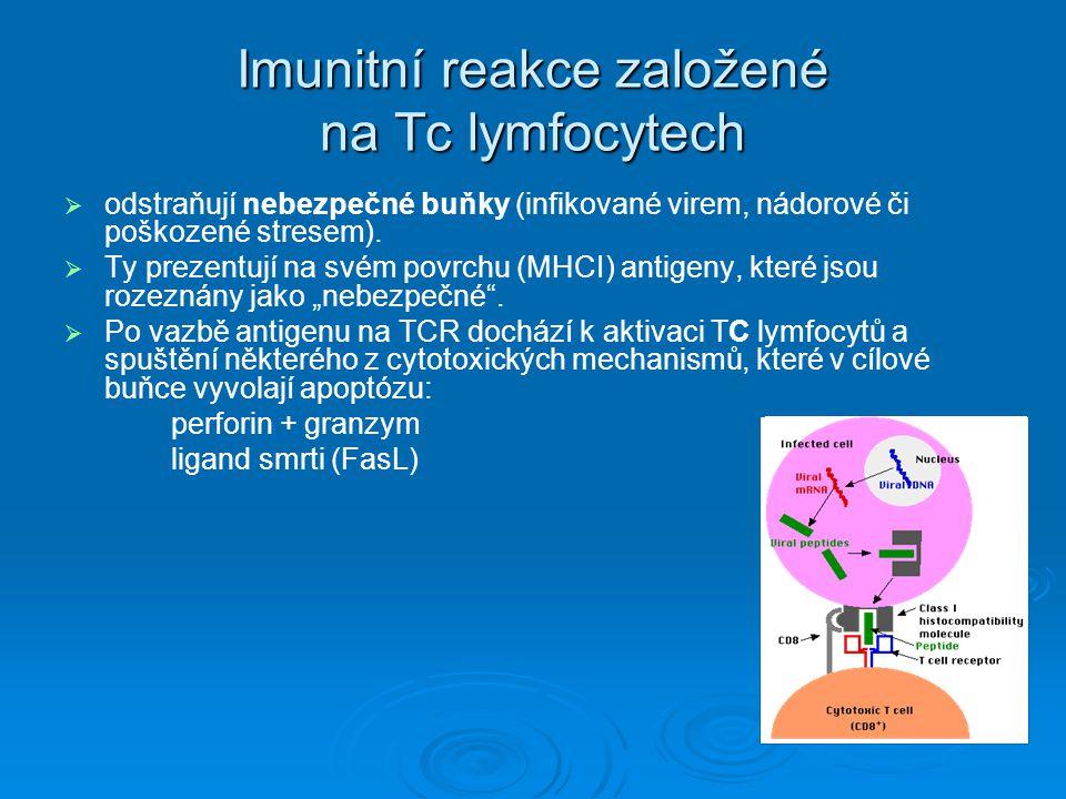 Imunitní reakce založené na Tc lymfocytech   odstraňují nebezpečné buňky (infikované virem, nádorové či poškozené stresem).   Ty prezentují na své