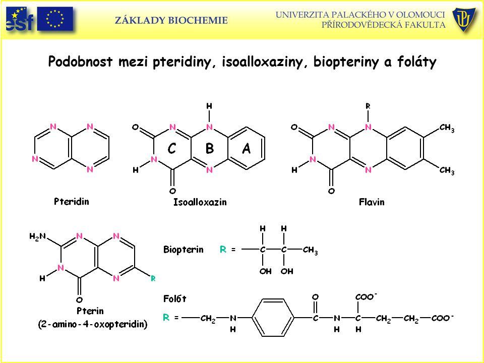 Podobnost mezi pteridiny, isoalloxaziny, biopteriny a foláty