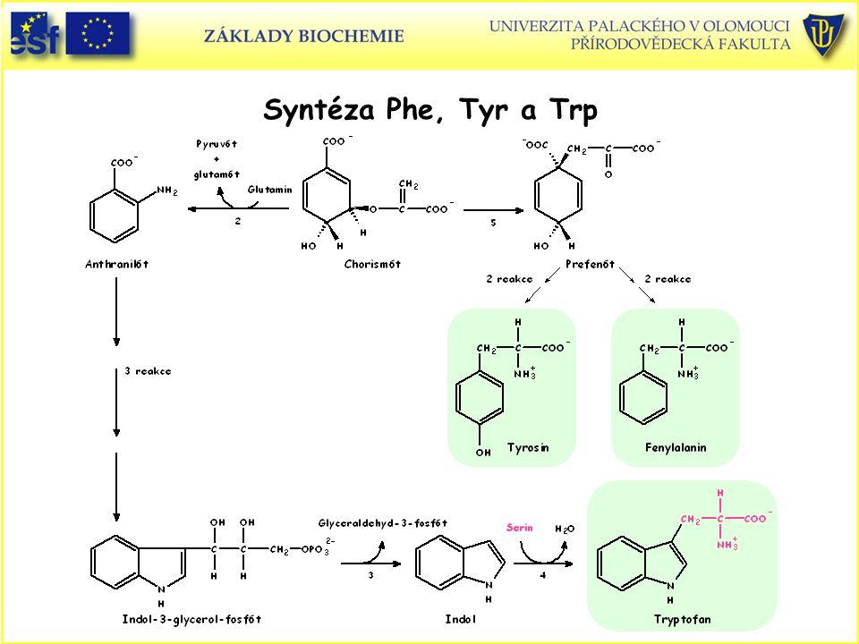Syntéza Phe, Tyr a Trp