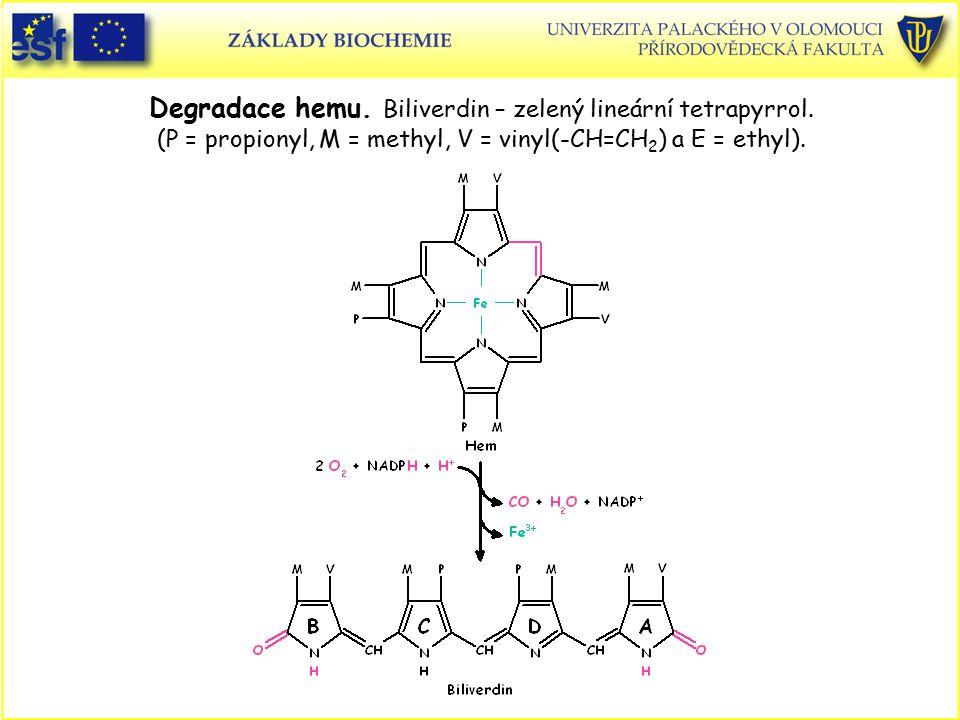 Degradace hemu. Biliverdin – zelený lineární tetrapyrrol. (P = propionyl, M = methyl, V = vinyl(-CH=CH 2 ) a E = ethyl).