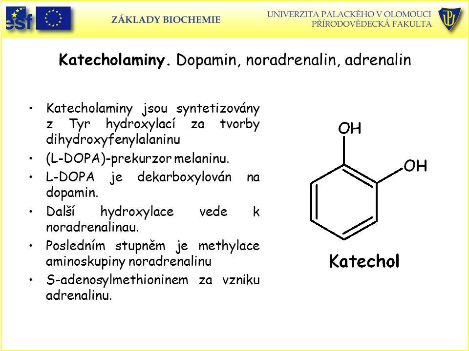 Katecholaminy. Dopamin, noradrenalin, adrenalin Katecholaminy jsou syntetizovány z Tyr hydroxylací za tvorby dihydroxyfenylalaninu (L-DOPA)-prekurzor