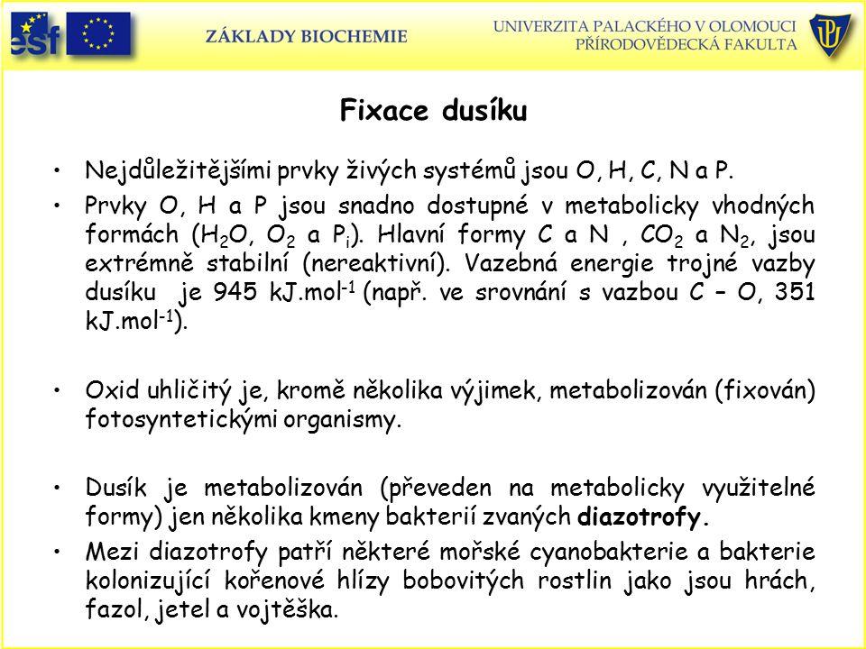 Fixace dusíku Nejdůležitějšími prvky živých systémů jsou O, H, C, N a P. Prvky O, H a P jsou snadno dostupné v metabolicky vhodných formách (H 2 O, O