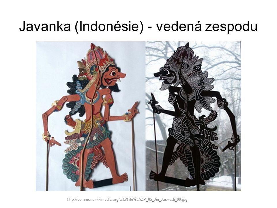 Javanka (Indonésie) - vedená zespodu http://commons.wikimedia.org/wiki/File%3AZP_05_Jin_Jaswadi_00.jpg