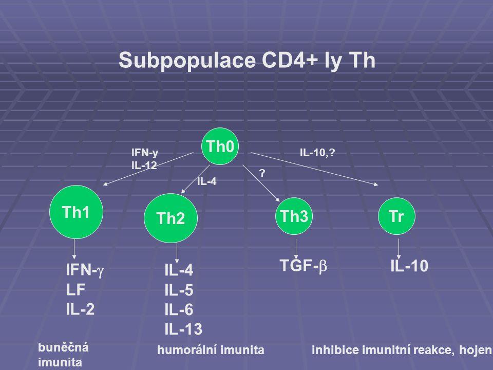 Th0 Th3 Th1 Th2 Tr IFN-  LF IL-2 IL-4 IL-5 IL-6 IL-13 TGF-  IL-10 IFN-y IL-12 IL-4 IL-10,? ? buněčná imunita humorální imunita inhibice imunitní rea