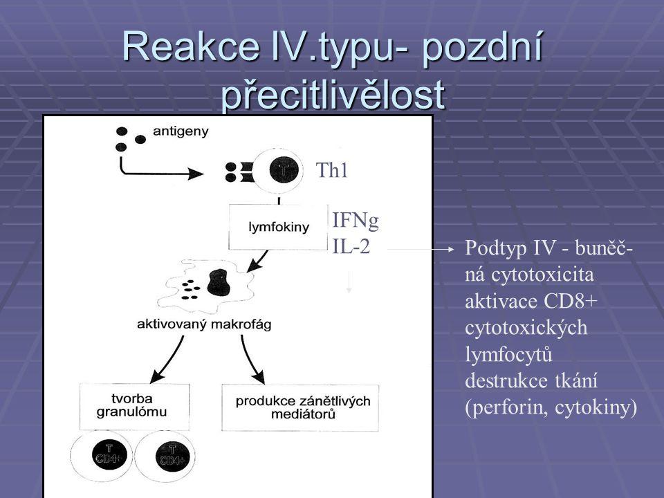 Incidence autoimunit  RA - 1-3%  Sjogrenův sy 1/20 000  Vaskulitidy 1/100 000  Celkově autoimunitní choroby  5-7% populace