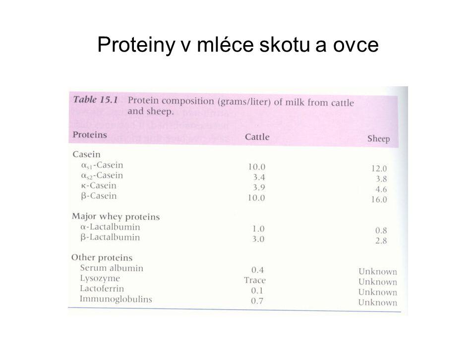 Proteiny v mléce skotu a ovce