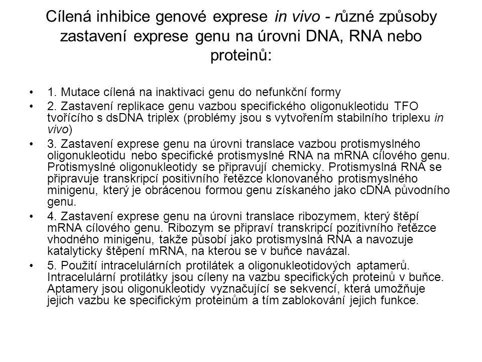 Cílená inhibice genové exprese in vivo - různé způsoby zastavení exprese genu na úrovni DNA, RNA nebo proteinů: 1. Mutace cílená na inaktivaci genu do