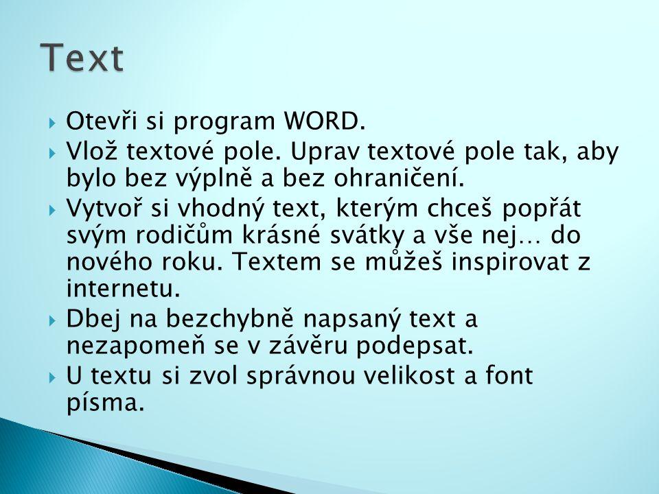  Otevři si program WORD. Vlož textové pole.