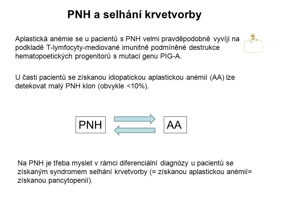 PNH a selhání krvetvorby Aplastická anémie se u pacientů s PNH velmi pravděpodobně vyvíjí na podkladě T-lymfocyty-mediované imunitně podmíněné destruk