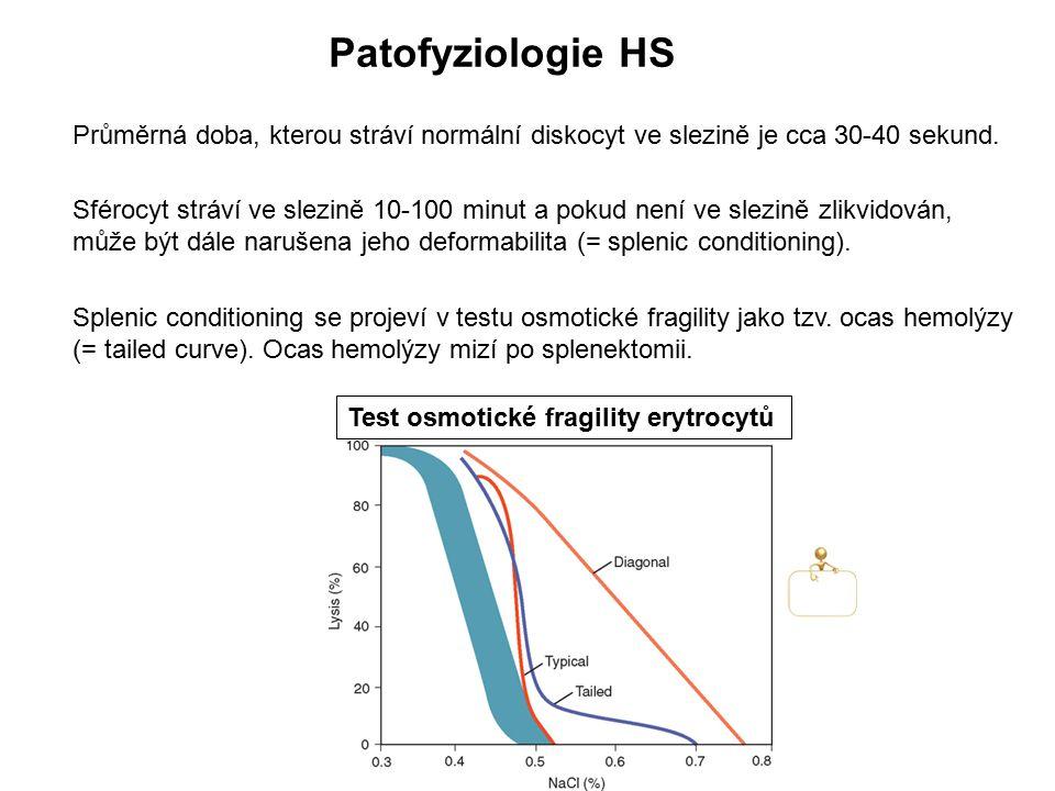 Patofyziologie HS Průměrná doba, kterou stráví normální diskocyt ve slezině je cca 30-40 sekund. Splenic conditioning se projeví v testu osmotické fra