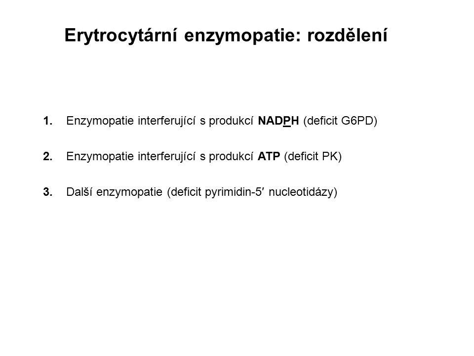 Erytrocytární enzymopatie: rozdělení 1. Enzymopatie interferující s produkcí NADPH (deficit G6PD) 2. Enzymopatie interferující s produkcí ATP (deficit