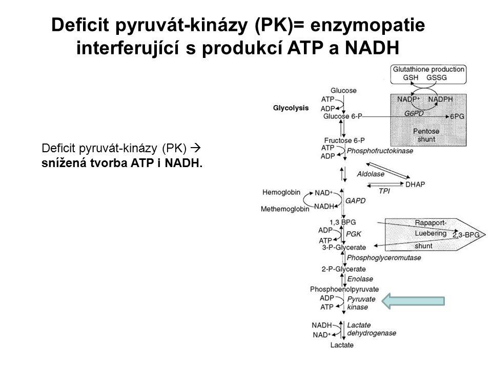 Deficit pyruvát-kinázy (PK)= enzymopatie interferující s produkcí ATP a NADH Deficit pyruvát-kinázy (PK)  snížená tvorba ATP i NADH.