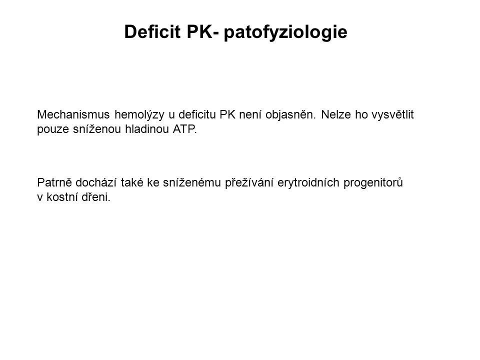 Deficit PK- patofyziologie Mechanismus hemolýzy u deficitu PK není objasněn. Nelze ho vysvětlit pouze sníženou hladinou ATP. Patrně dochází také ke sn