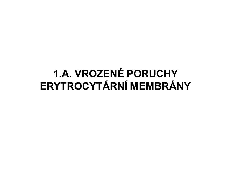 1.A. VROZENÉ PORUCHY ERYTROCYTÁRNÍ MEMBRÁNY