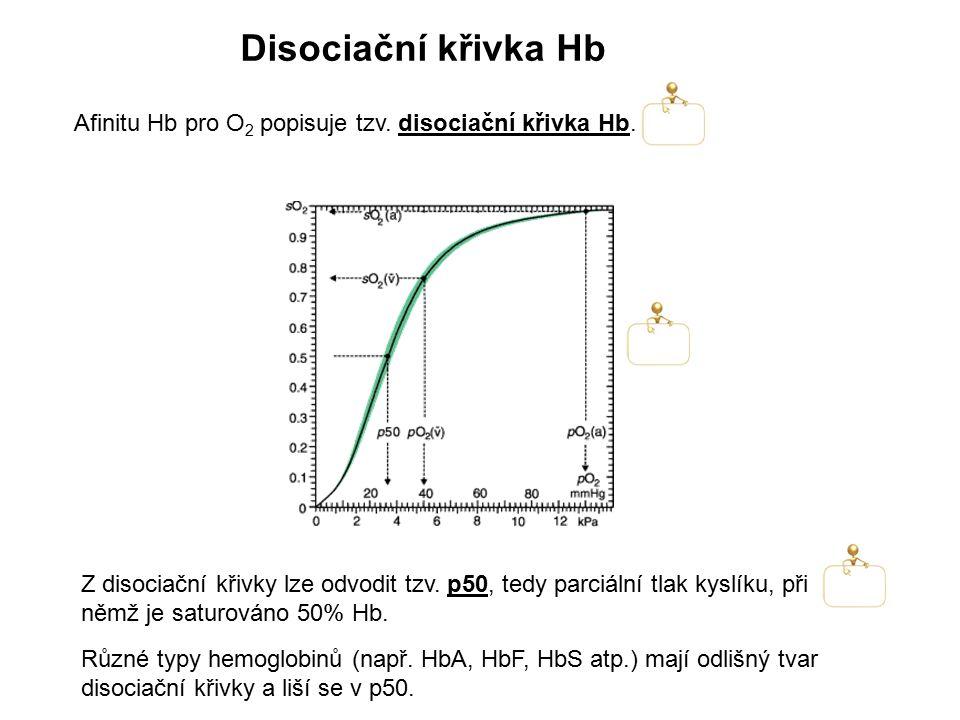 Afinitu Hb pro O 2 popisuje tzv. disociační křivka Hb. Disociační křivka Hb Z disociační křivky lze odvodit tzv. p50, tedy parciální tlak kyslíku, při