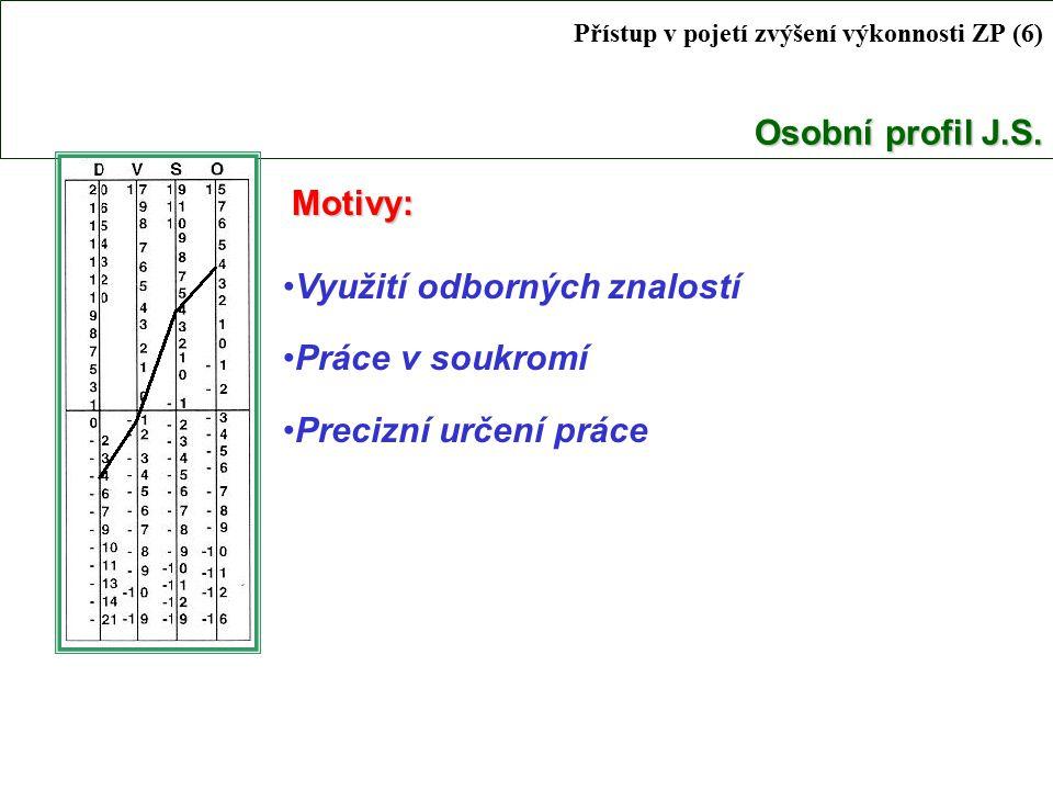 Osobní profil J.S.Přístup v pojetí zvýšení výkonnosti ZP (6) Osobní profil J.S.