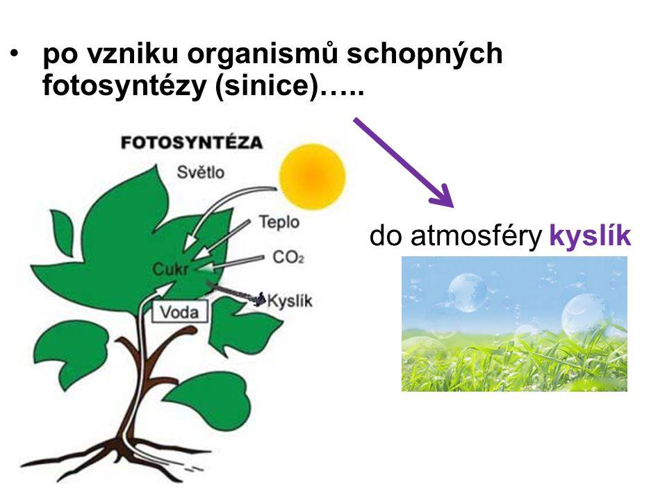 po vzniku organismů schopných fotosyntézy (sinice)….. do atmosféry kyslík