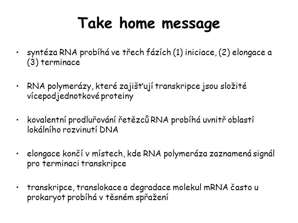 Take home message syntéza RNA probíhá ve třech fázích (1) iniciace, (2) elongace a (3) terminace RNA polymerázy, které zajišťují transkripce jsou slož
